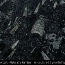image 09-kamien-naturalny-marmur-fossil-black-jpg