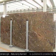 image 01-kamien-naturalny-marmur-fossil-brown-jpg