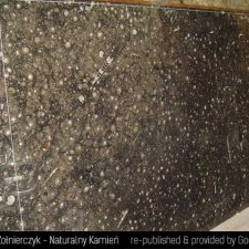 image 05-kamien-naturalny-marmur-fossil-brown-jpg