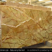 image 07-kamien-naturalny-marmur-rainforest-yellow-jpg
