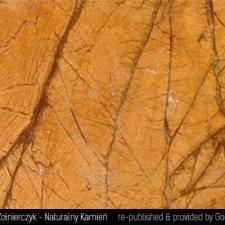 image 13-kamien-naturalny-marmur-rainforest-yellow-jpg
