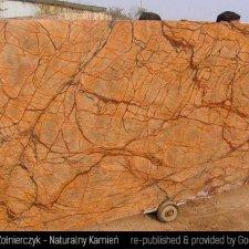 image 14-kamien-naturalny-marmur-rainforest-yellow-jpg