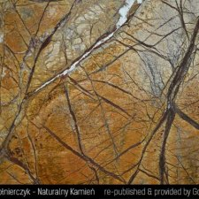 image 03-kamien-naturalny-marmur-rainforest-brown-jpg