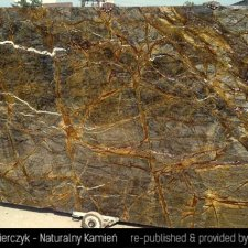 image 15-kamien-naturalny-marmur-rainforest-brown-jpg