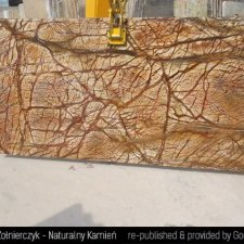 image 16-kamien-naturalny-marmur-rainforest-brown-jpg