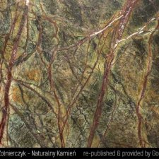 image 08-kamien-naturalny-marmur-rainforest-green-jpg