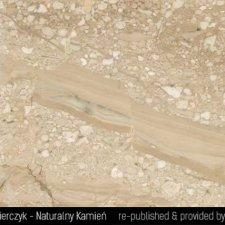 image 11-kamien-naturalny-marmur-breccia-sarda-jpg